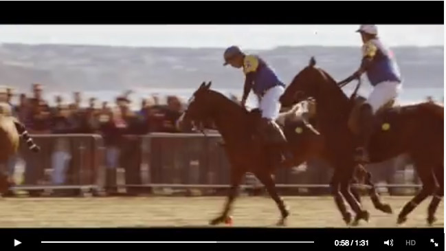 Polo-video